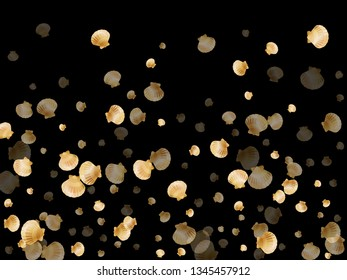 Gold seashells vector, golden pearl bivalved mollusks. Cartoon scallop, bivalve pearl shell, marine mollusk isolated on black wild life nature background. Cool gold sea shell illustration.