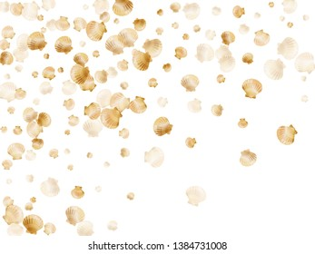 Gold seashells vector, golden pearl bivalved mollusks. Macro scallop, bivalve pearl shell, marine mollusk isolated on white wild life nature background. Stylish gold sea shell graphics.