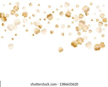 Gold seashells vector, golden pearl bivalved mollusks. Cartoon scallop, bivalve pearl shell, marine mollusk isolated on white wild life nature background. Stylish gold sea shell vector.