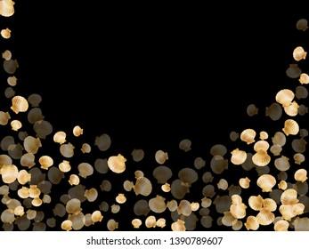 Gold seashells vector, golden pearl bivalved mollusks. Macro scallop, bivalve pearl shell, marine mollusk isolated on black wild life nature background. Rich gold sea shell illustration.