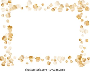 Gold seashells vector, golden pearl bivalved mollusks. Underwater scallop, bivalve pearl shell, marine mollusk isolated on white wild life nature background. Cool gold sea shell graphics.