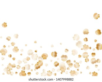 Gold seashells vector, golden pearl bivalved mollusks. Macro scallop, bivalve pearl shell, marine mollusk isolated on white wild life nature background. Trendy gold sea shell vector.