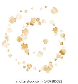 Gold seashells vector, golden pearl bivalved mollusks. Cartoon scallop, bivalve pearl shell, marine mollusk isolated on white wild life nature background. Chic gold sea shell vector.
