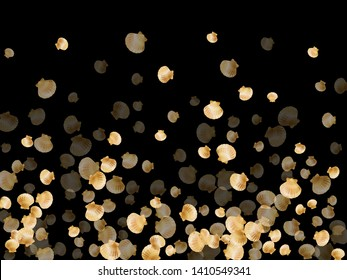 Gold seashells vector, golden pearl bivalved mollusks. Exotic scallop, bivalve pearl shell, marine mollusk isolated on black wild life nature background. Rich gold sea shell design.