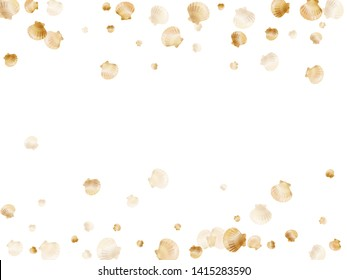 Gold seashells vector, golden pearl bivalved mollusks. Cartoon scallop, bivalve pearl shell, marine mollusk isolated on white wild life nature background. Rich gold sea shell design.