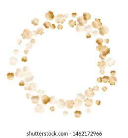 Gold seashells vector, golden pearl bivalved mollusks. Sea scallop, bivalve pearl shell, marine mollusk isolated on white wild life nature background. Rich gold sea shell design.