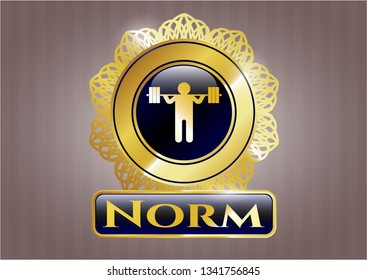 Gold shiny badge with squat icon and Norm text inside