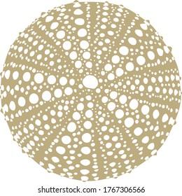 Gold Silluette Sea Urchin Vector