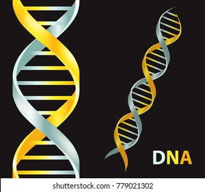Gold and silver Dna icon. Dna symbol. Dna helix symbol. Gene icon. Vector illustration on black background