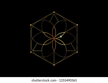 Gold Symbol of alchemy esoteric, Flower of Life. Sacred geometry, graphic element Vector isolated Illustration. Golden Mystic icon platonic solids, abstract geometric drawing, typical crop circles