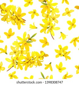 Golden Bell seamless pattern Forsythia suspensa, Easter tree, spring branch with blossoming yellow flowers. Vector illustration. Spring decor europaea blooming in garden bush for prints, posters, card