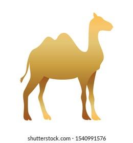 golden camel manger animal character vector illustration design