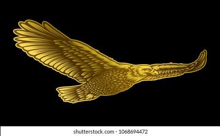 Golden eagle vector illustration