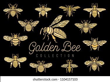 Golden embroidery patch bee crown bumblebee wasp Insect embroidery royal gold set collection Fashion t shirt  Hand drawn vector illustration