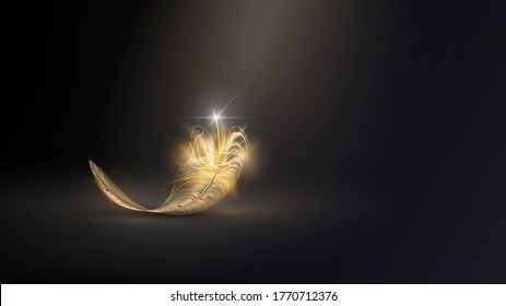 Golden feather of a bird or angel in the dark, glamor and elegance