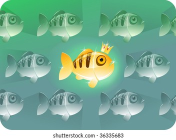 Golden fish with golden crown surround usual fishes.