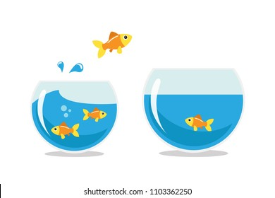 Golden fish jumping to other fishbowl. Isolated vector illustration.