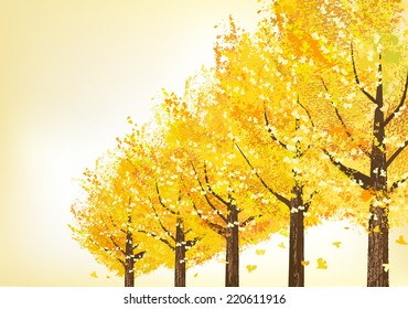 Golden ginkgo trees in late autumn.  File contains Clipping masks.