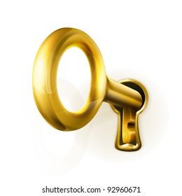 Golden key, vector