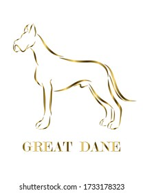 Golden line drawing on white background of Great Dane dog. It is standing