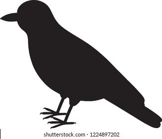 Golden oriole bird silhouette vector illustration