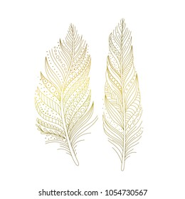 Golden ornamental bird feathers isolated, hand drawn decorative design elements in boho style. Vector illustration.