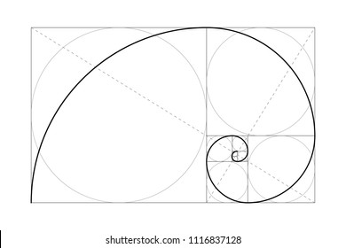Golden ratio. Fibonacci number. Circles in golden proportion. Geometric shapes. Abstract vector background. Vector