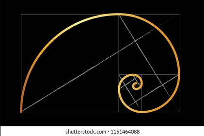 Golden ratio template vector eps illustration icon Golden proportion Golden section Divine proportion Fibonacci Leonardo spiral symbol Gometric shapes Circles in golden proportion Rectangle funny gold