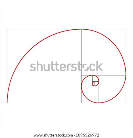 golden ratio template vector illustration fibonacci stock vector