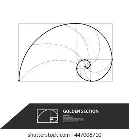 Golden ratio vector.