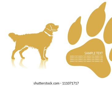 Golden retriever background - vector illustration