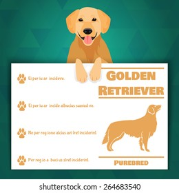 Golden retriever breed dog banner with text. Vector Illustration