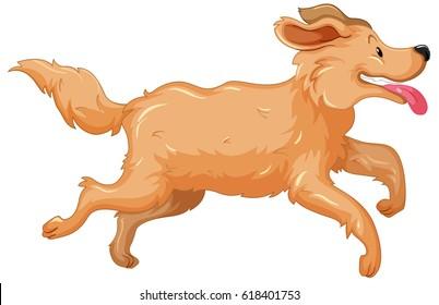 Golden retriever dog running illustration