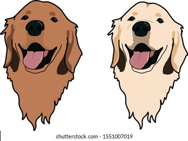 Golden retriever dog in two different colors head portrait cartoon beautiful dog