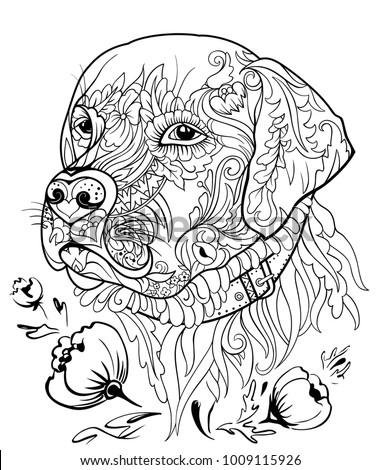 Golden Retriever Dog Zentangle Style Vector Stock ...