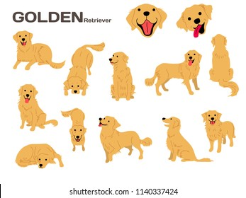 golden retriever illustration,dog poses,dog breed