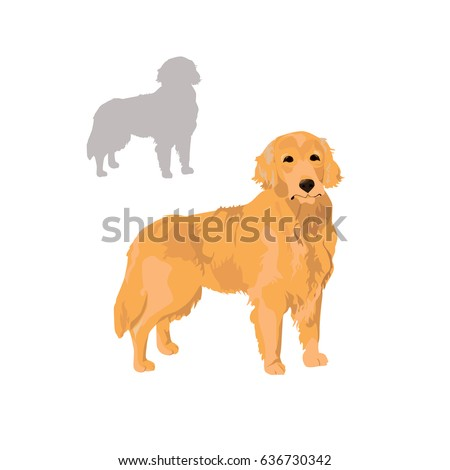 Golden Retriever Silhouette Isolated On White Stock Vector Royalty