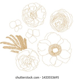 golden rose flower.Ranunculus.Anemone hupehensis.  Flowers drawn by a line.  Decorative element for tattoo, greeting card, wedding invitation.