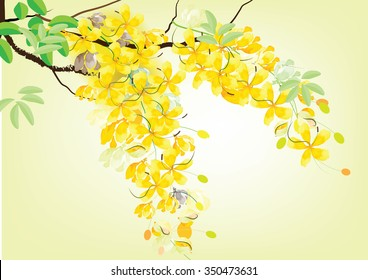 Golden shower flowers or Ratchaphruek ,yellow  watercolor look  on white background,set of asean national flower for Thailand
