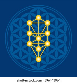 Golden Tree in blue Flower of Life over dark blue. Kabbalah Sephirots in an ancient mandala symbol composed of overlapping circles, forming a flower like pattern. Sacred geometry. Illustration. Vector
