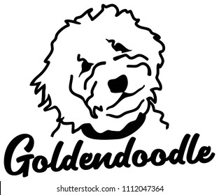 Goldendoodle head silhouette white with name