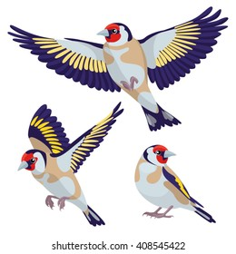 Goldfinches in cartoon style on white background