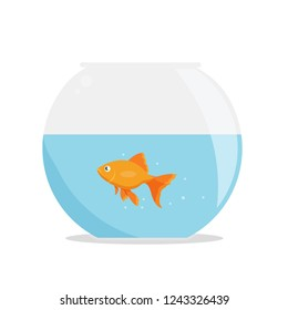 Goldfish in fishbowl isolated on whute background. Fish in round aquarium. Vector stock.