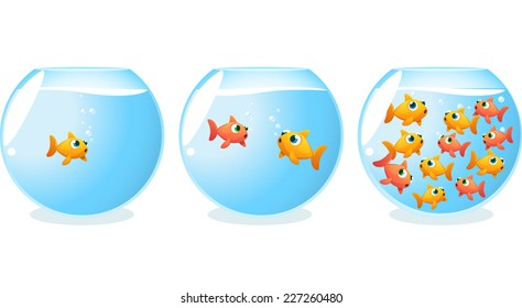 Goldfish generations fish tanks progression over time vector illustration.