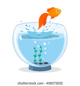 Goldfish jumping out of the aquarium. flat vector illustration isolated on white background