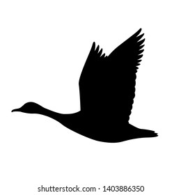 goose canadian, .vector illustration,black silhouette
