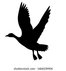 goose canadian,vector illustration,black silhouette ,profile view