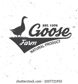 Goose Farm Badge or Label. Vector illustration. Vintage typography design with goose silhouette. Elements on the theme of the goose farming business. Farm insignia and patches isolated on white