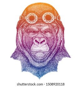 Gorilla, monkey, ape wearing vintage aviator leather helmet. Image in retro style. Flying club or motorcycle biker emblem. Vector illustration, print for tee shirt, badge logo patch