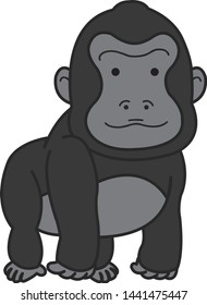 Gorillas are ground-dwelling, predominantly herbivorous apes that inhabit the forests of central Sub-Saharan Africa.